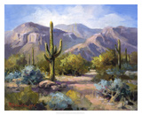Catalina Mountain Foothills Giclee Print by Maxine Johnston