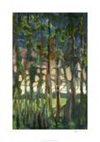 Through the Trees II Limited Edition by Bill Rose