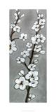 White Blossoms II Særudgave af Jennifer Goldberger