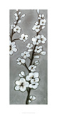 White Blossoms II Limited Edition by Jennifer Goldberger