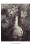 Gourd II Art by Elena Ray