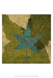 Teal Leaf II Prints by Louise Montillo