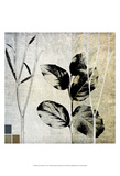 Leaves & Stems I Prints by Catherine Kohnke