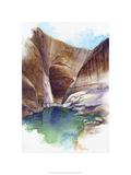 Escalante Canyon - Lake Powell, Ut. Premium Giclee Print by Bruce White