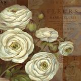 Patina Ranunculus Affiches par Pamela Gladding