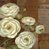 Patina Ranunculus Prints by Pamela Gladding