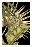 Rustic Tropical Leaves II Giclee Print by Ethan Harper