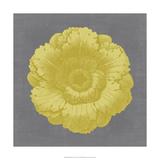 Gilded Rosette VI Giclee Print