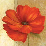 Papaver II Prints by Pamela Gladding
