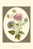 Antique Bouquet II Kunstdrucke von Sydenham Teast Edwards