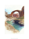 Rainbow Bridge - Lake Powell, Ut. Premium Giclee Print by Bruce White