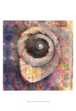 Seashell-Snail Prints by Elena Ray