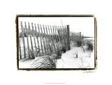 Beach Scape III Premium Giclee Print by Laura Denardo