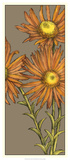 Graphic Flower Panel I Affiches par Jennifer Goldberger
