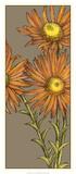 Graphic Flower Panel I Prints by Jennifer Goldberger