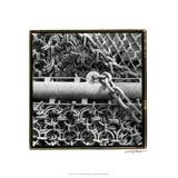 Heavy Metal IV Premium Giclee Print by Laura Denardo