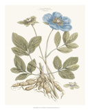 Bashful Blue Florals I Print by John Miller