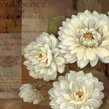Patina Dahlia Posters by Pamela Gladding
