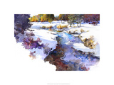 Snake River Meadow - Keystone, Co. Premium Giclee Print by Bruce White