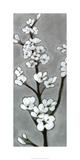 White Blossoms I Særudgave af Jennifer Goldberger