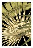 Rustic Tropical Leaves I Giclee Print by Ethan Harper