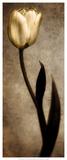 Damask Tulip I Prints by Christine Zalewski