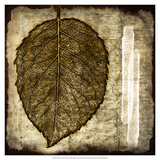Fall Leaves III Art by Christine Zalewski