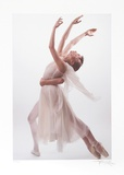 Ballet Collectable Print by Harvey Edwards
