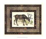 Rustic Moose Giclee Print by  Vision Studio