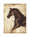 Weathered Equestrian I Limited Edition by Ethan Harper