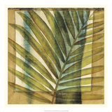 Seaside Palms II Prints by Jennifer Goldberger