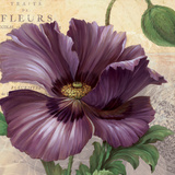 Purple Garden I Posters by Pamela Gladding