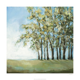 Tree in Summer Limited Edition by Christina Long