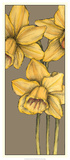 Graphic Flower Panel IV Print by Jennifer Goldberger