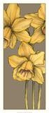 Graphic Flower Panel IV Print by Jennifer Goldberger