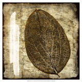 Fall Leaves IV Posters by Christine Zalewski