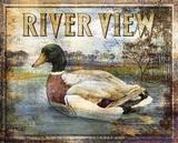 Duck Sign I Posters af Paul Brent