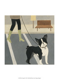City Dogs III Prints by Megan Meagher