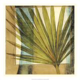 Seaside Palms I Premium Giclee Print by Jennifer Goldberger