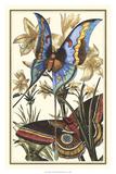 Butterfly II Giclée-Druck von  Vision Studio