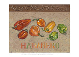Habanero Posters by Theresa Kasun