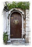 Doors of Europe XIX Art by Rachel Perry