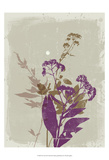 New Flora IX Prints by Ken Hurd
