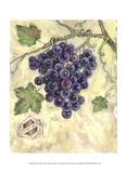 Pinot Noir Prints by Theresa Kasun