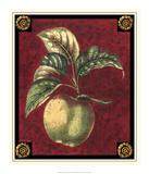 Pomme De Hubbardston Giclée-tryk af Pierre D'Avoine