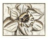 Fresco Flowerhead V Giclee Print by Nancy Slocum