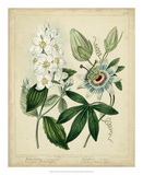 Cottage Florals II Poster by Sydenham Teast Edwards