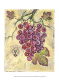 Merlot Poster by Theresa Kasun