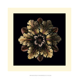 Small Classic Rosette I Giclee Print