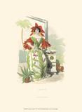 Le Fleur Animé VI Posters by J.J. Grandville